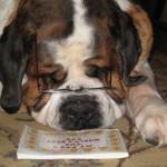 Otto Reading